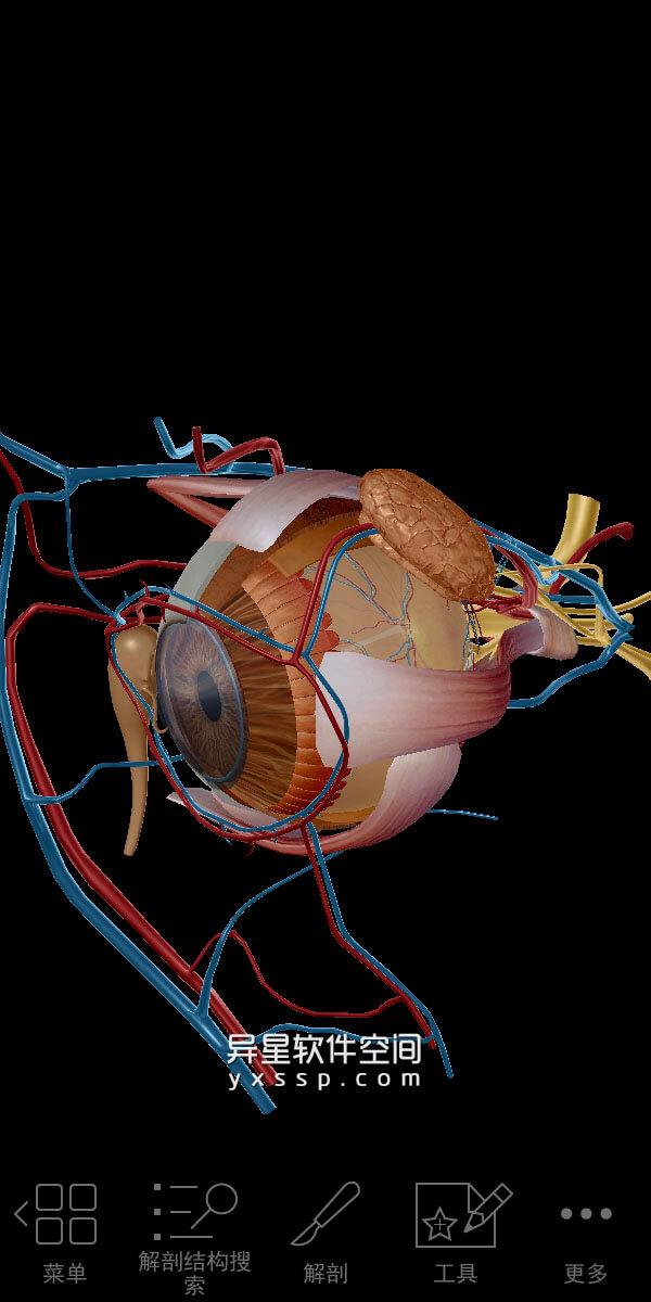 2020人体解剖学图谱 v2020.0.73 for Android 直装付费破解版 + 数据包 —— 拥有超过10000条完整的三维人体解剖学模型「胆小勿入」-解剖学模型, 解剖学, 模型, 教育, 图谱, 医疗, 人体解剖学, 人体模型, 三维人体